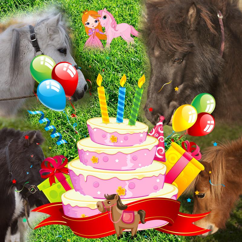 Anniversaire Baby-poney à La Clairière du Findez. Une fête d'anniversaire inoubliable !