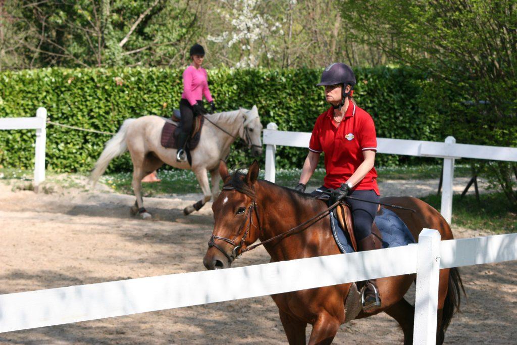 Cours d'équitation à La Clairière du Findez