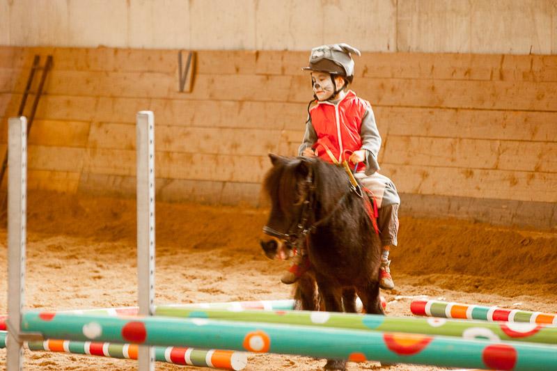 Baby-poneys à La Clairière du Findez - le carnaval