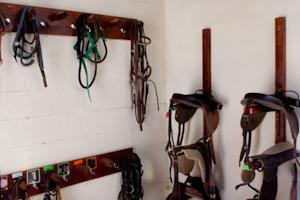 La sellerie des baby-poneys au club d'équitation la Clairière du Findez, 0 Francheville, dans l'ouest lyonnais