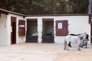 La cour des baby-poneys au club d'équitation la Clairière du Findez, 0 Francheville, dans l'ouest lyonnais