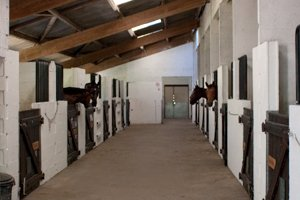L'écurie du club d'équitation La Clairière du Findez, à Francheville