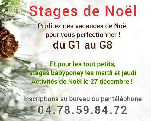 Équitation - Stages de Noël à la Clairière du Findez