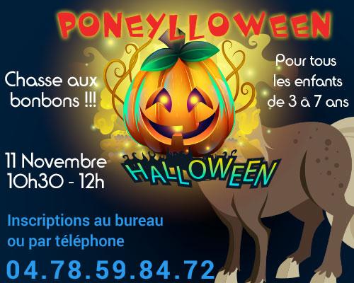 Poneylloween - Chasse aux bonbons