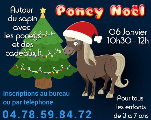 Poneynoël - Autour du sapin avec les poneys